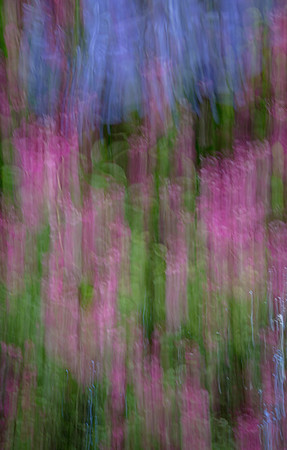 Monet's Garden Abstract 4