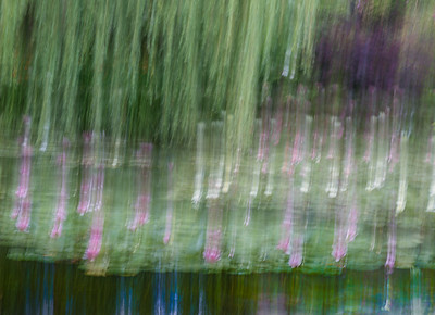 Monet's Garden Abstract 6