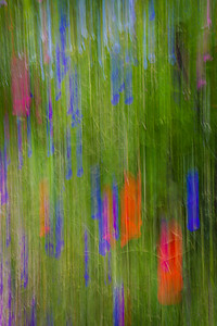Monet's Garden Abstract 1