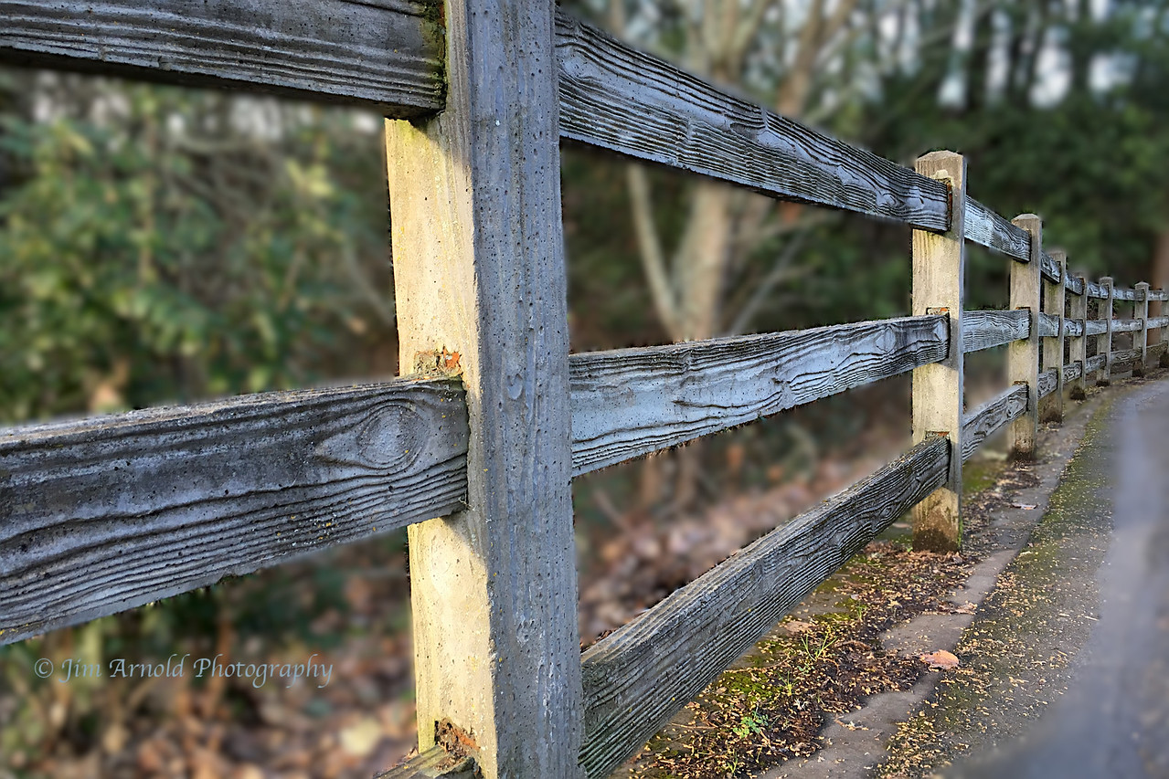 Fence at Alton Baker Park