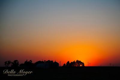 Davis Sunsets