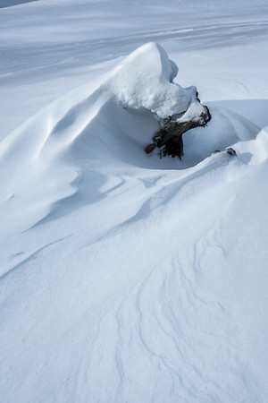 Illusions of Winter
