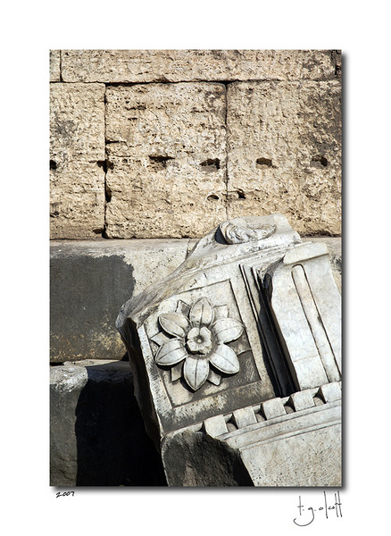 Ruins II, The Roman Forum