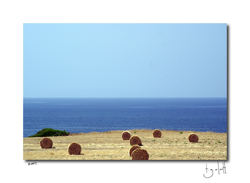 Hay Field, Northern Coast