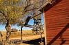 091017 - 0114 Bonanza Canyon Creek Ranch - Santa Fe, NM