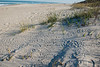 150214 - 5671 Footsteps in the Sand - Vero Beach, FL