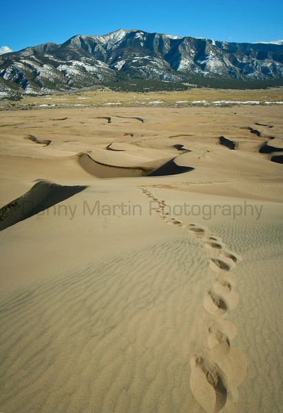 Journey up the Dunes.<br /> Great Sand Dunes National Park, Colorado.