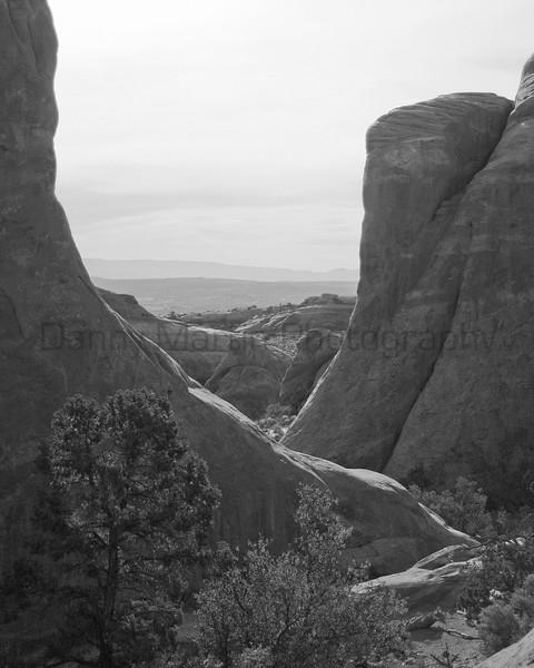 Maze of Rock.  <br /> Colorado National Monument, Colorado.
