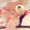 White-berry