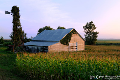 Corn Field Barn