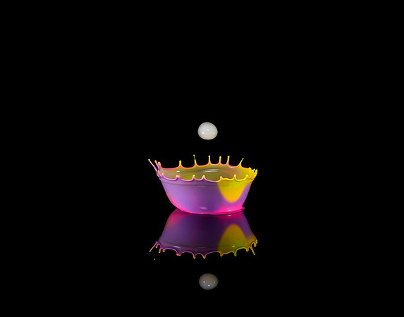 Pink & Purple Cup