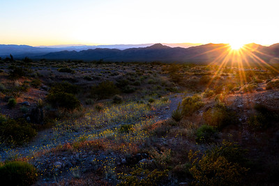 Gold Butte Sunset