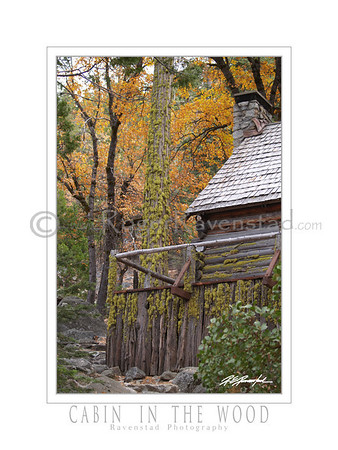 "18X24 Poster: ""CABIN IN THE WOOD""   $49.95"