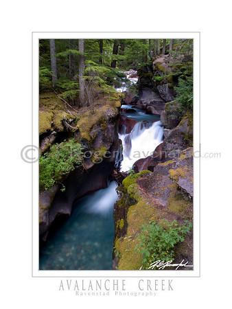 "18X24 Poster: ""AVALANCHE CREEK"" $49.95"