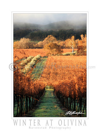 "30X40 Poster: ""WINTER AT OLIVINA"" $95"
