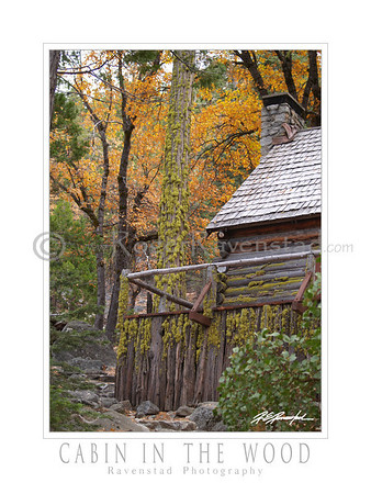 "30X40 Poster: ""CABIN IN THE WOOD"" $95"