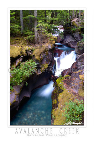 "24X36 Poster:  ""AVALANCHE CREEK"" $95"