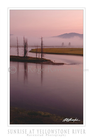 "24X36 Poster:  ""SUNRISE AT YELLOWSTONE RIVER"" $95"