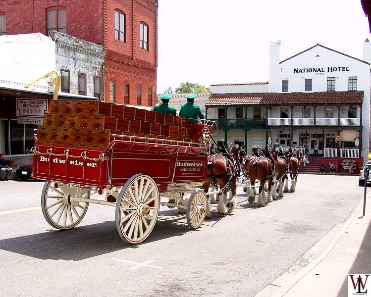 The Budweiser Wagon Visits Jackson, CA