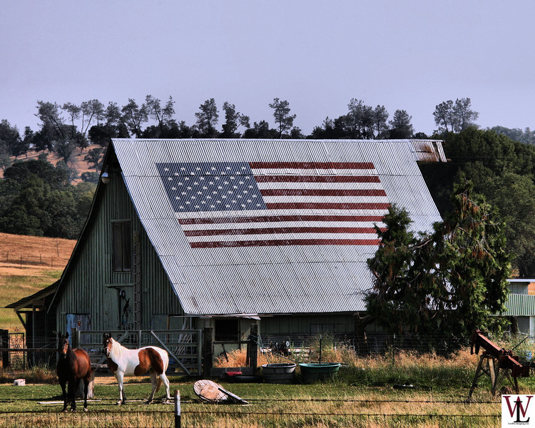 Barn in Ione California with American Flag
