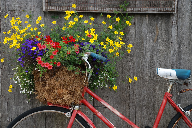 red bike basket
