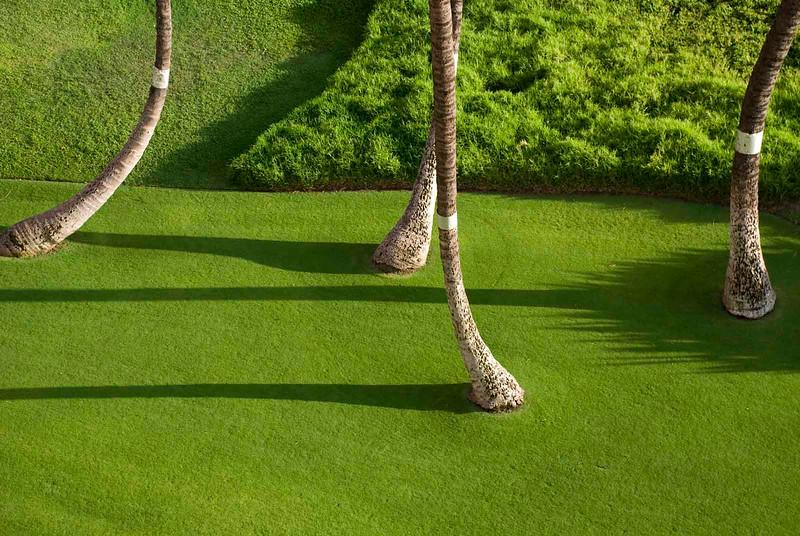 tree pattern small 2
