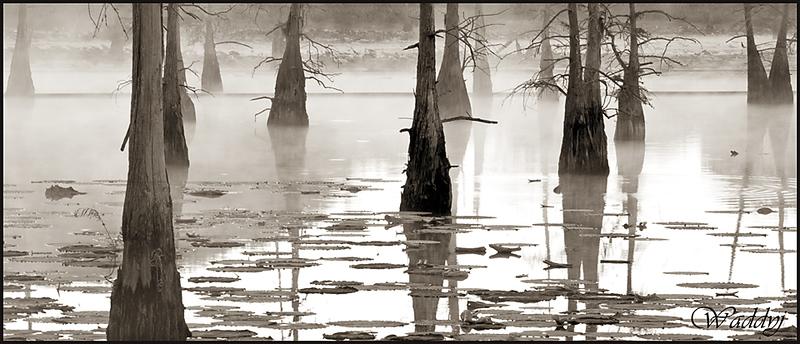 Spirits on the Bayou