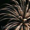 workhouse fireworks 2014-lg-6