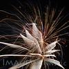 workhouse fireworks 2014-lg-2