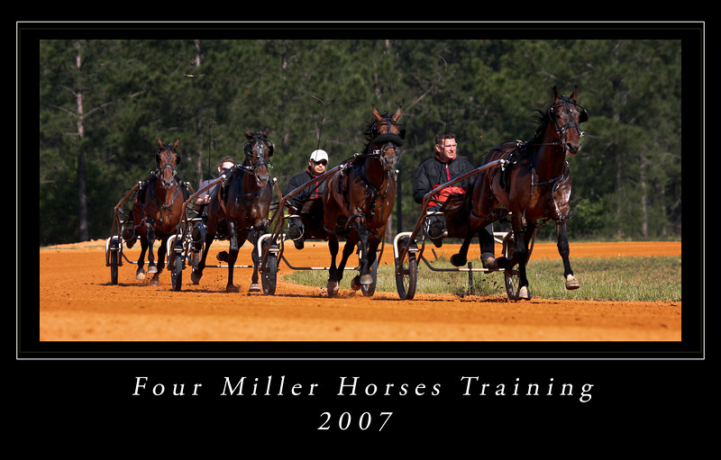 Four Miller Horsescroppedxcolor flattened