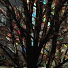 Tree Abstract