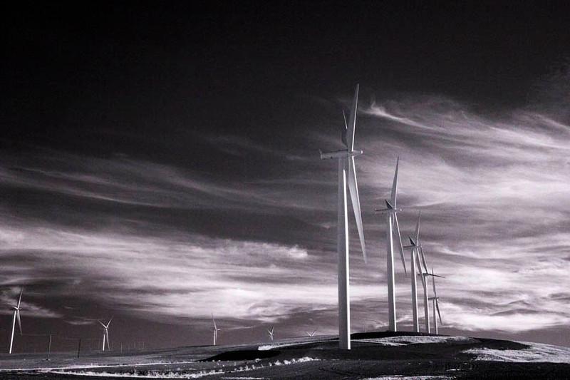 Windmill Power_4975