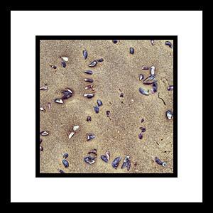 Suelo de mar 3