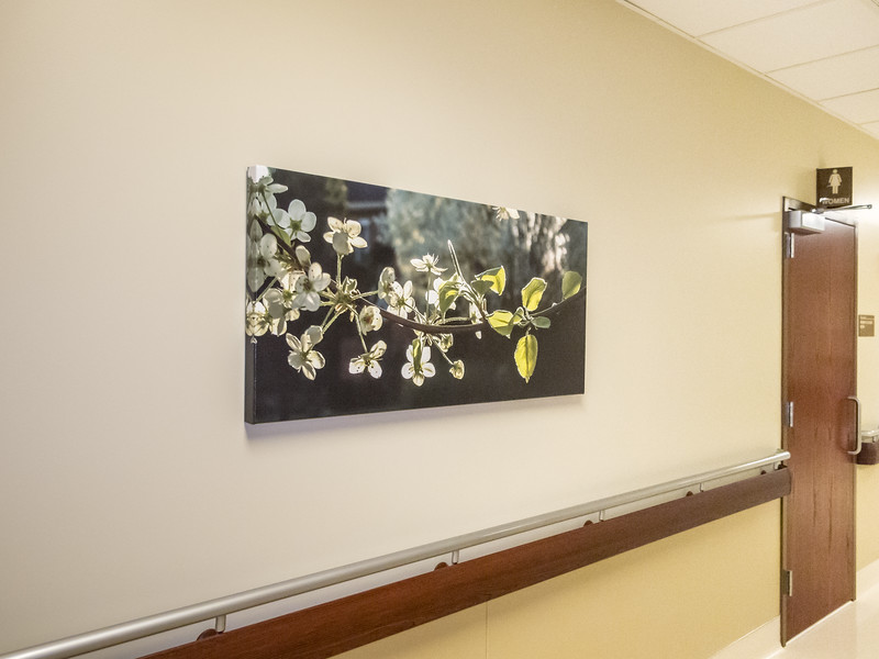 Anderson Hospital Cath Lab installed