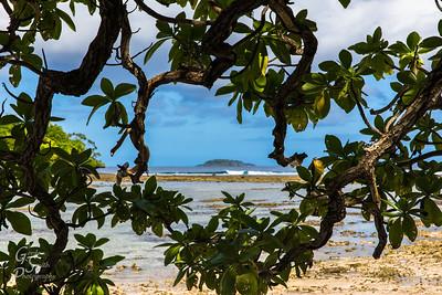 Tonga Landscape Seascape