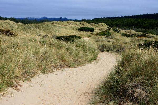 Oregon Dunes Nationa Recreation Area, Waxmyrtle Trai, Oregonl. September 2007