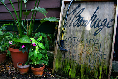 New Orleans, Louisiana, Garden District. March 2008