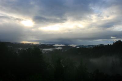 Santa Cruz Mountains. December 2008.