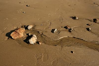 Waddell Creek, Big Basin State Park, California. January 2008