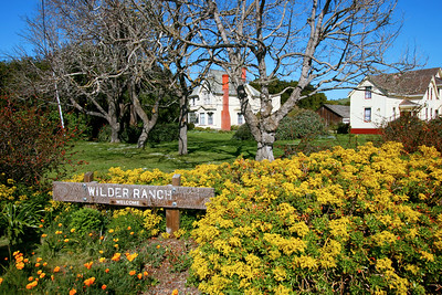 Wilder Ranch, Santa Cruz, March 2009