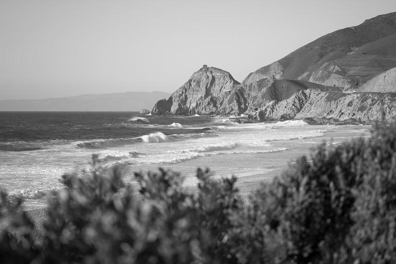 Wild California