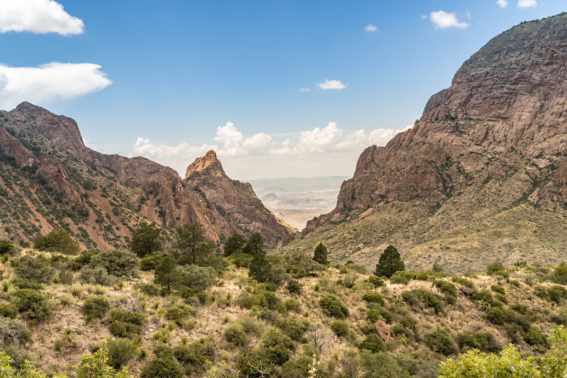 The Window View of Chisos Mountains