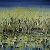 "Shoreline Sensation 003 Fall 2010<br /> Size: 24"" x 59.5""<br /> Meduium: Acrylic Latex<br /> PRIVATE COLLECTION"