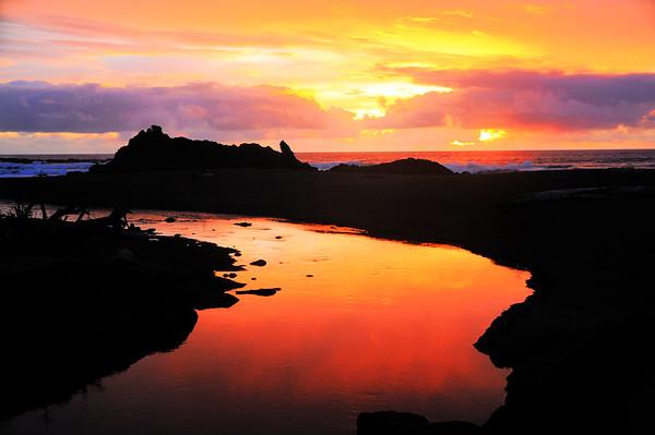 DSC_3923_Oregon Coast