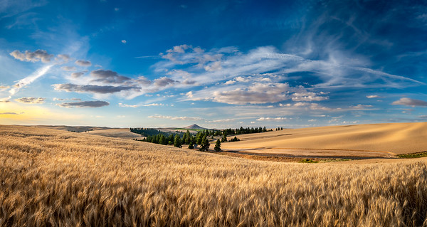 Steptoe Butte in Pano