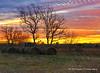 Hay Stacked at Dawn - Dickinson, TX
