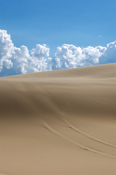 The dunes were a striking and powerful sight to behold. Stockton Bight at Port Stephens, New South Wales, Australia.
