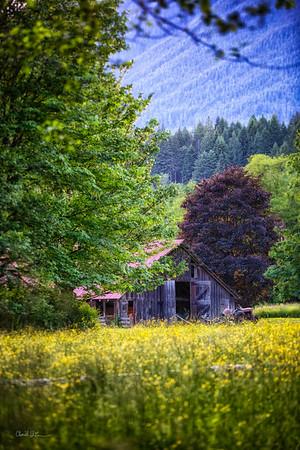 Green's Barn