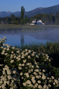 Pond and Barn in the Morning Sun - Montana