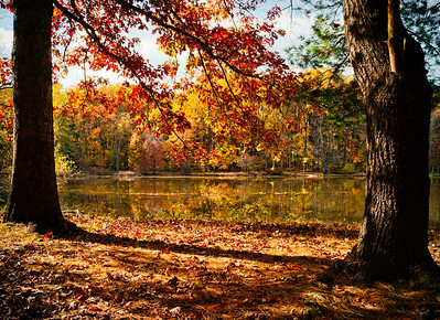 A fall view of a lake lake in Maryland.